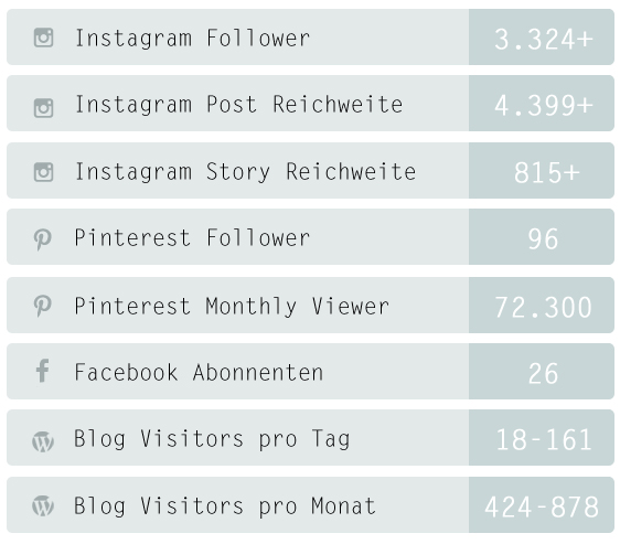 Follower_Statistik